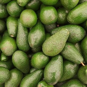Notizie dal blog: Tutti amano l'avocado!