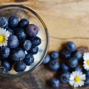 Notizie dal blog: I piccoli e gustosi mirtilli