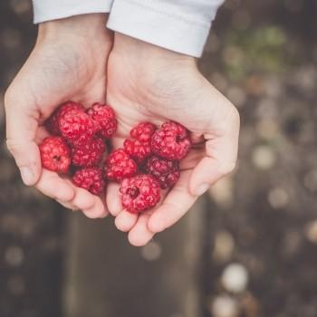 Notizie dal blog: Il mondo del food e i millennials