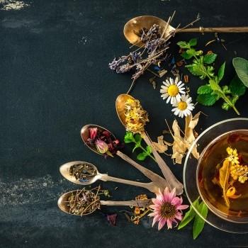 Notizie dal blog: I Benefici del tè verde