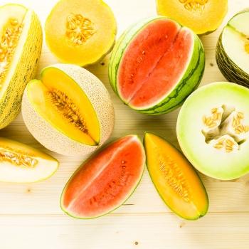 Notizie dal blog: Anguria e melone non passano mai di moda!