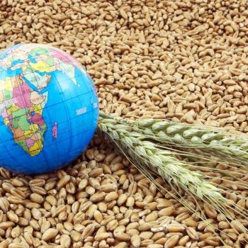 Notizie dal blog: Il cibo e la sfida al futuro