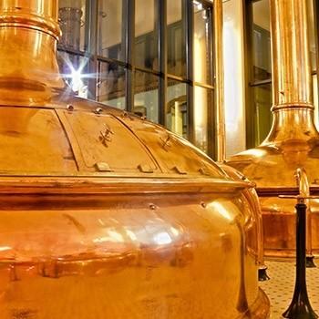 Notizie dal blog: Birra: la magia della fermentazione