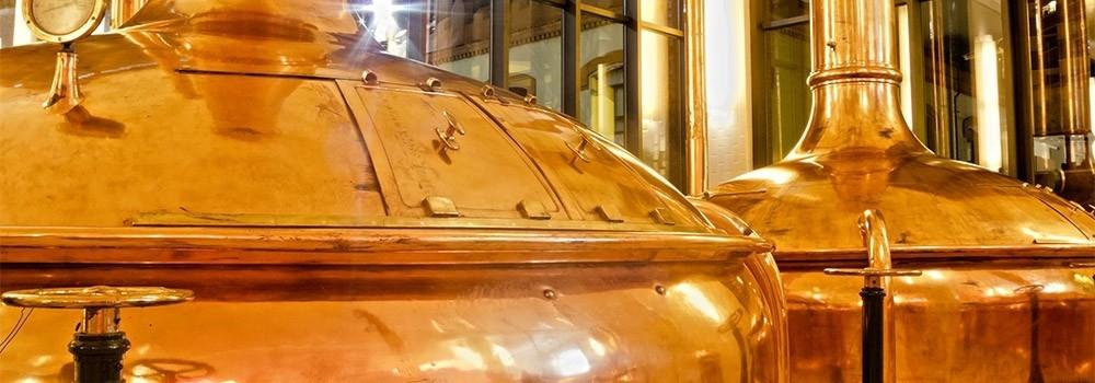Birra: la magia della fermentazione
