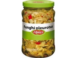 D'AMICO  FUNGHI PLEUROTUS  KG 1,55