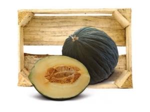 Melone verde or. it al kg