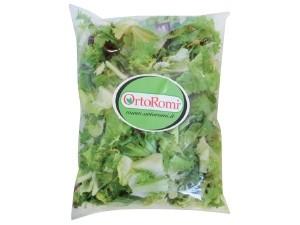 Ortoromi insalata mista kg 1